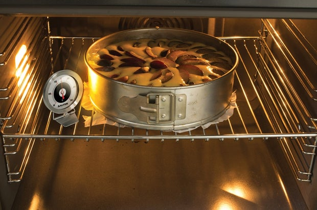 Salter Oven Thermometer